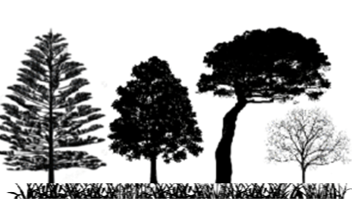 Grass with trees
