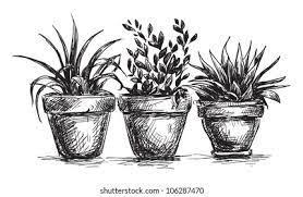 low herbs and flower garden